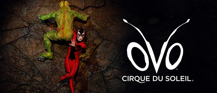 OVO du Cirque du Soleil au Centre Vidéotron